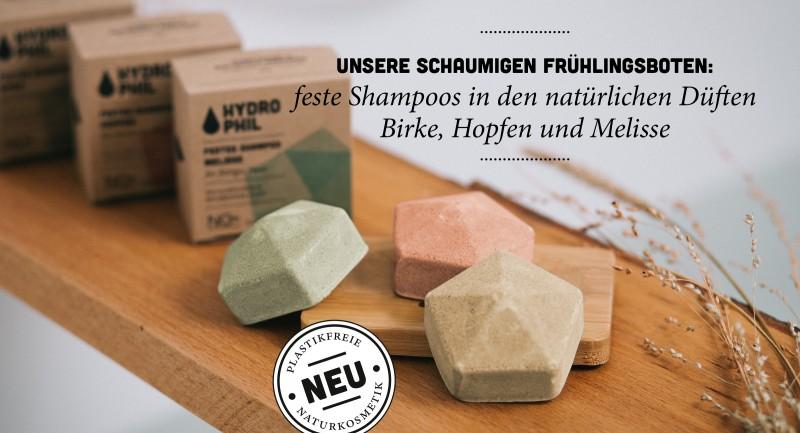 Launch Feste Shampoos